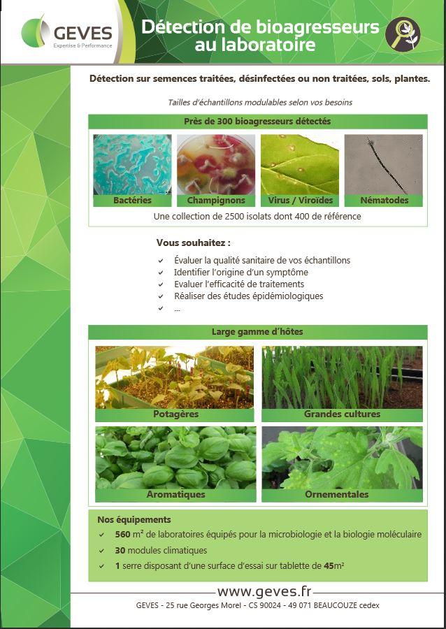 Détection de bioagresseurs au laboratoire