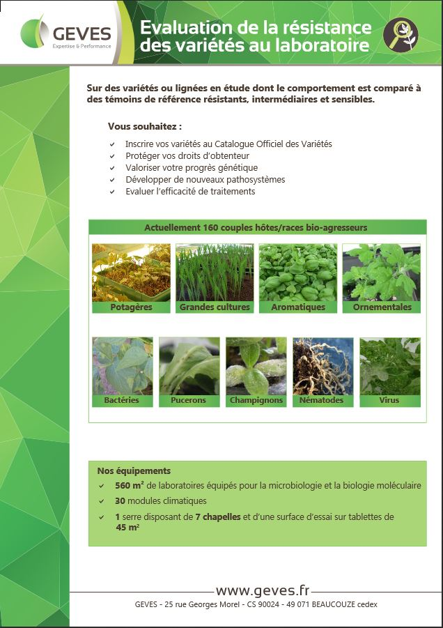 Evaluation de la résistance des variétés