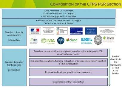 Composition of the CTPS PGR Section