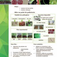 Efficacite de traitements en pathologie
